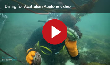 2 Brothers Abalone South Australia